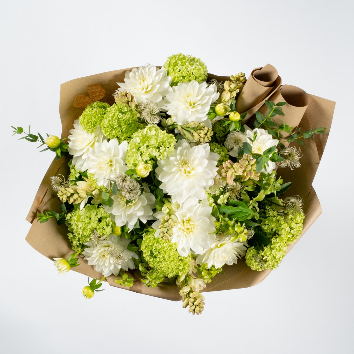 Bloom - Fairfield